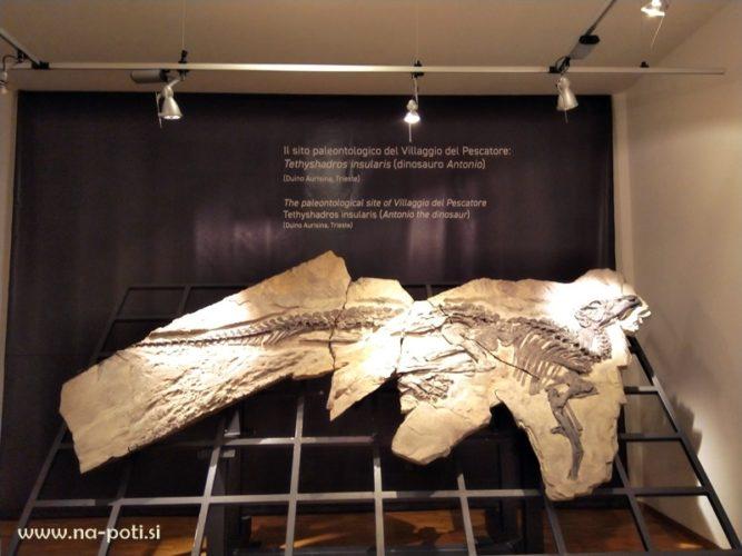 muzej trst